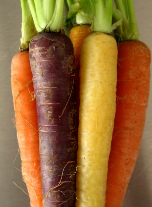 color variety in carrots1 Yaels Variety Hour: Stuff We Like, WTF Files, Sports & Food